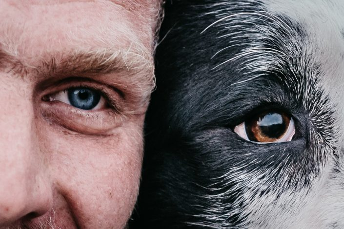 Zvířata & lidé
