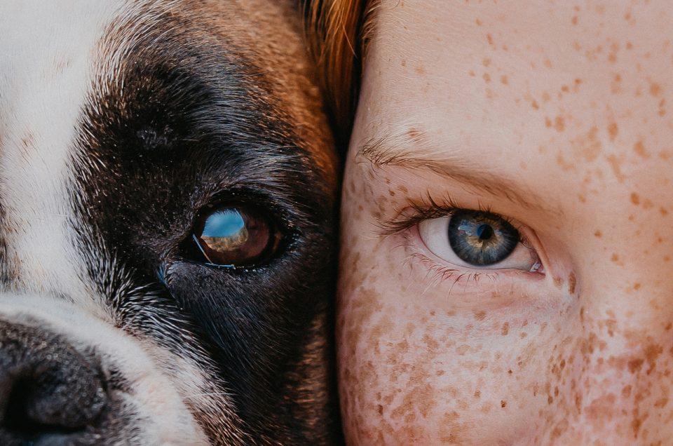 Verča a její psí kamarádi